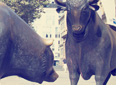 The Bull vs. the Bear - our latest monthly research round up
