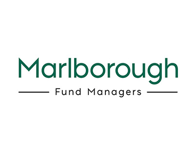 Marlborough Nano-Cap Growth: February 2021 fund update