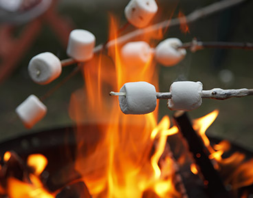What can marshmallows teach us about saving?