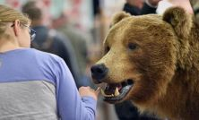 2 bear-proof US buys for upside and dividend growth