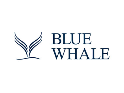 LF Blue Whale Growth: November 2020 fund update